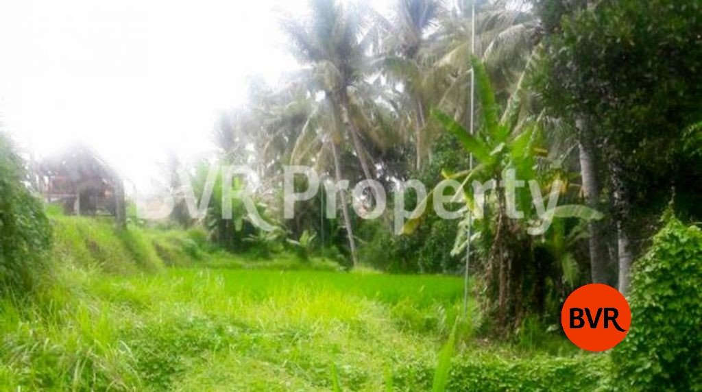 Great Land Investment For Sale In Ubud