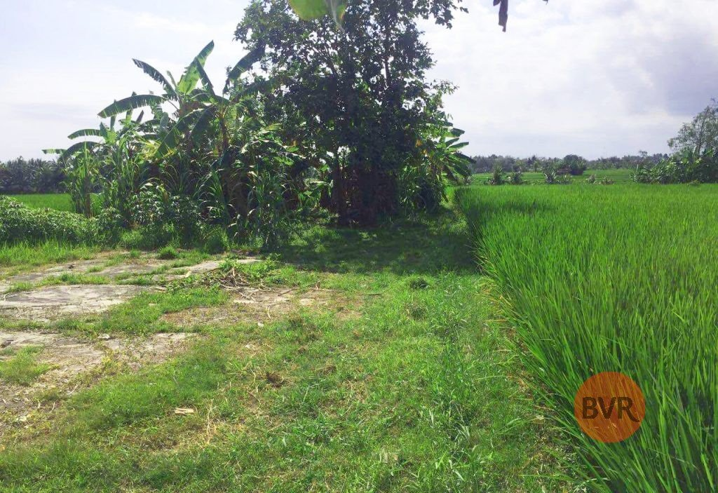 Large Parcel Of Commercial Land For Sale Near Tanah Lot