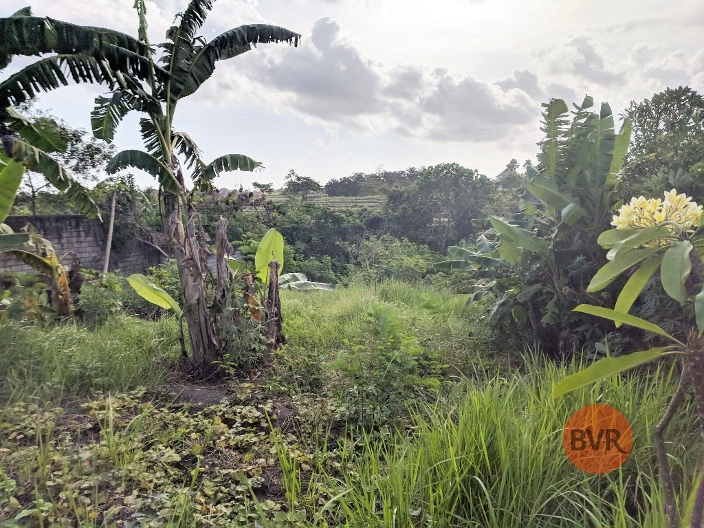 Land With River View For Sale In Peaceful Location Of Canggu