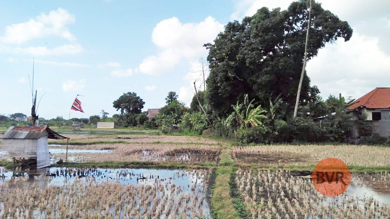 Land For Sale In Seminyak With Rice Field View