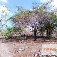 BALI LAND DEVELOPMENT INVESTMENT AREA FOR SALE IN JIMBARAN