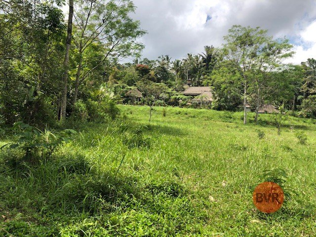 Land With Stunning River View For Sale In Ubud