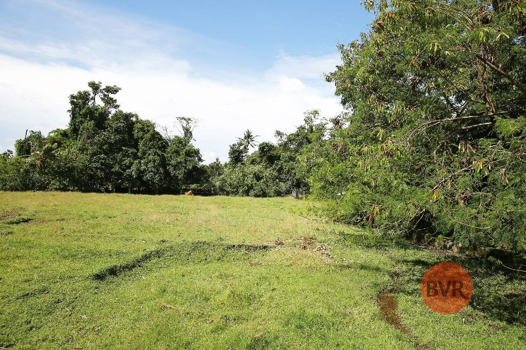 Prime Huge Parcel Of Land For Sale In Quiet Area Of Canggu