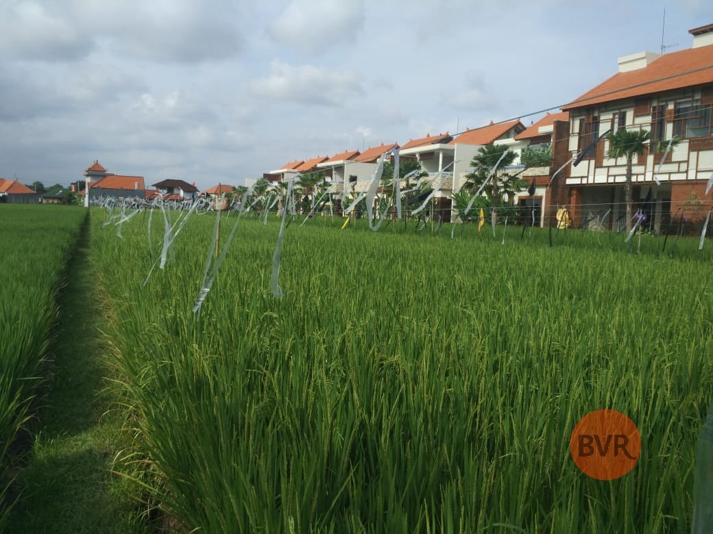 AMAZING OPPORTUNITY FOR LAND INVESTMENT IN SEMINYAK