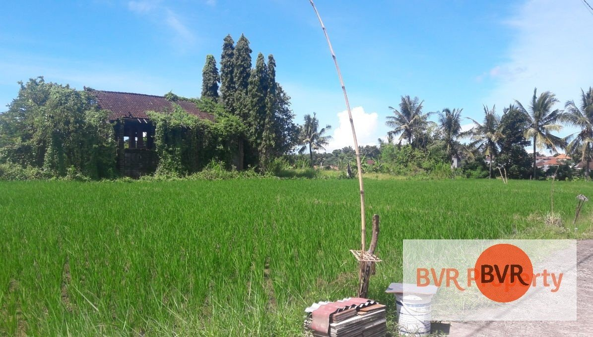 STUNNING PIECE OF LAND AVAILABLE FOR SALE IN TABANAN
