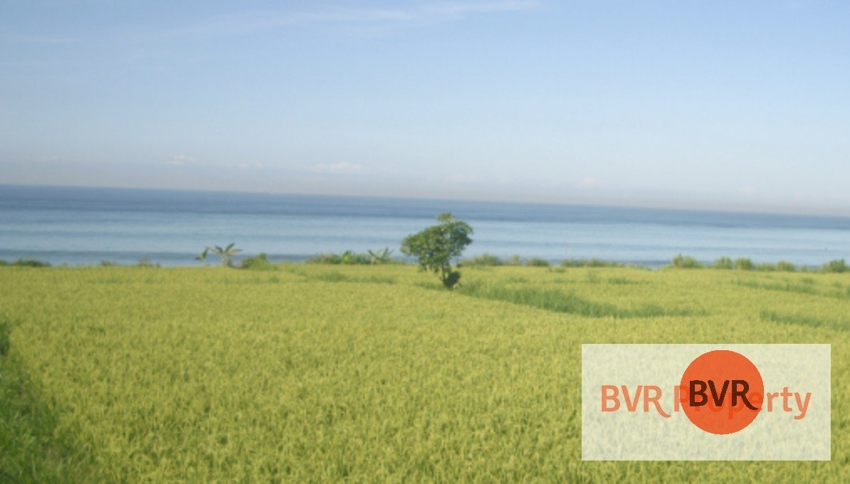 ABSOULTE BEACHFRONT FOR SALE EAST BALI
