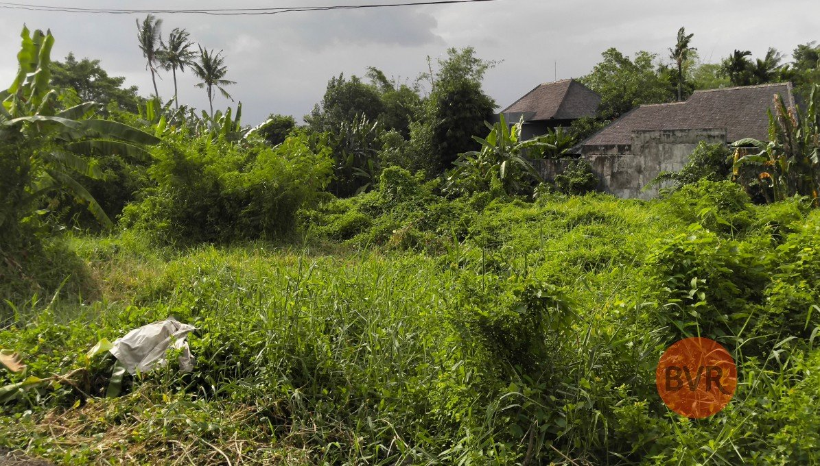 LAND IN EXCEPTIONAL LOCATION – CANGGU, PERERENAN – 12.4 ARE