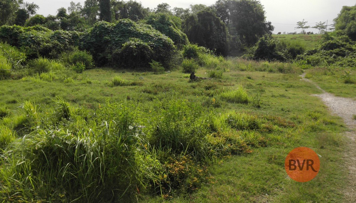 MUST SEE – LAND IN PERERENAN 9.8 ARE