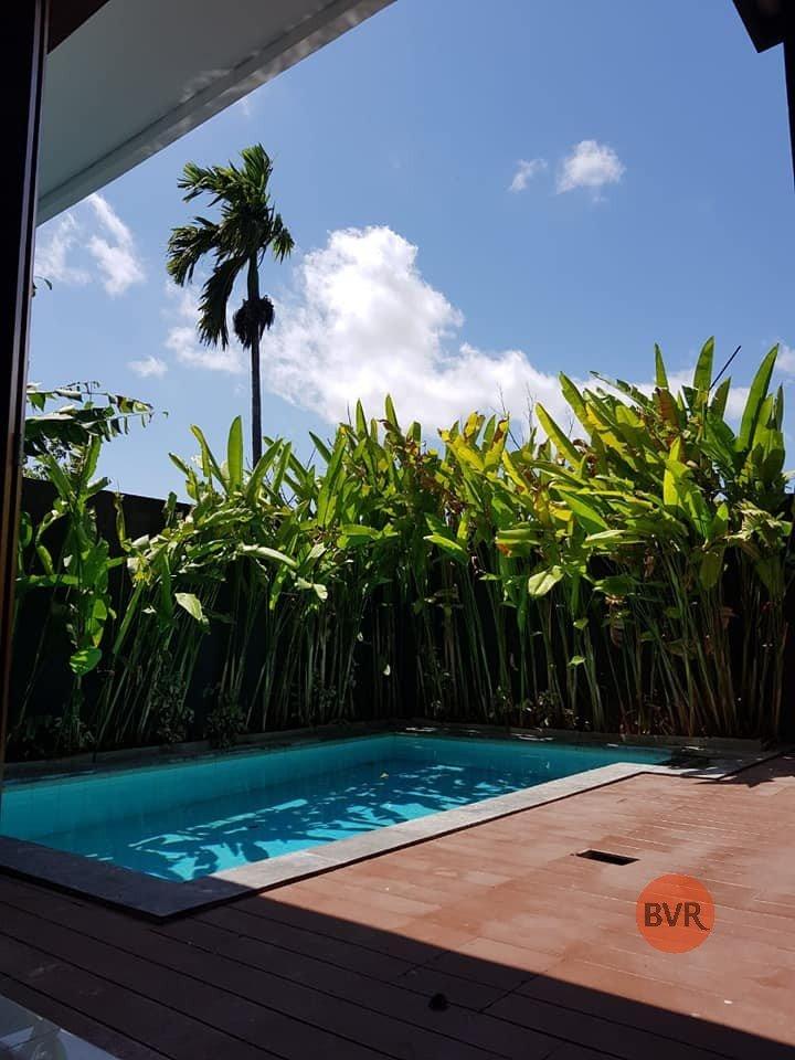 Hot Deal Tranquil 3 Bedroom Villa with Rice Fields View Kerobokan