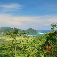 Beautifully View Land In Lombok 11