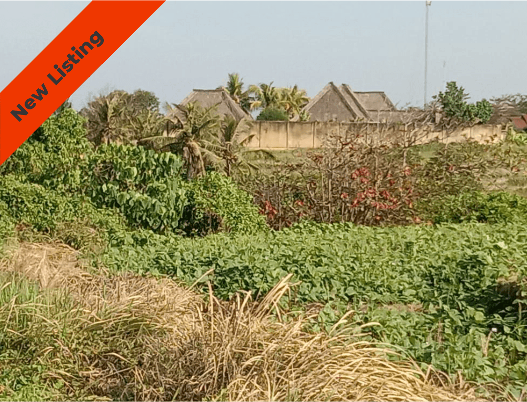 Strategic Location Land in Tabanan for Sale